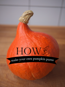 Pumpkin Puree How-To from Kiwi and Peach